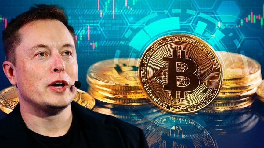 Elon Musk, Twitter Biyografisine Bitcoin Etiketini Ekledi