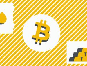 Bitcoin ve Stok Akış Modeli nedir