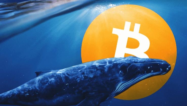 Yarım milyar dolardan fazla Bitcoin harekete geçti