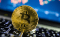 Yatırım Fonları 43 Milyar Dolardan Fazla Bitcoin Tutuyor