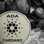 cardano coin wallet