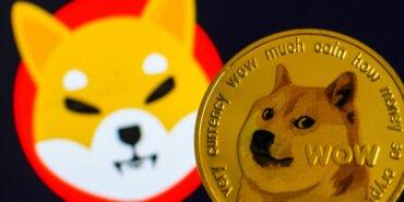 """SHIB'nin %400 rallisi, köpek temalı diğer """"meme"""" tokenlerine de sıçrayabilir"""